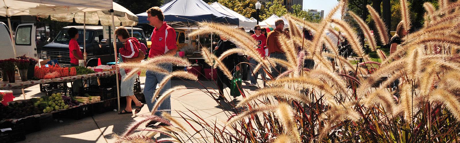 Photo of Dane County Farmers Market