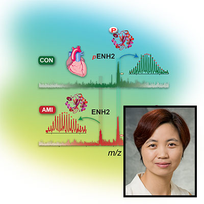 Science profile for Ying Ge