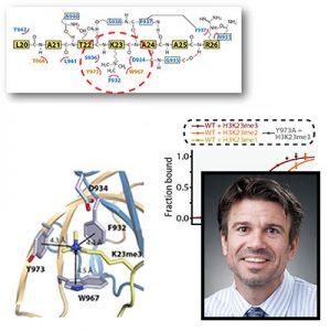 John Denu science profile