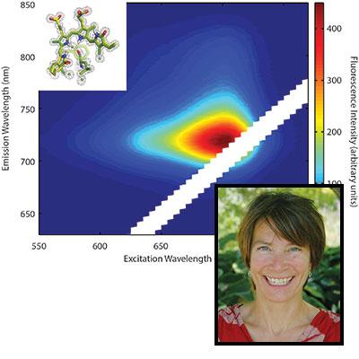 Katrina Forest science profile
