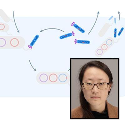 Tina Wang science and photo